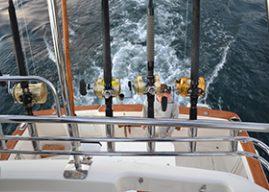 Big Game Fishing: Hooked On Charters